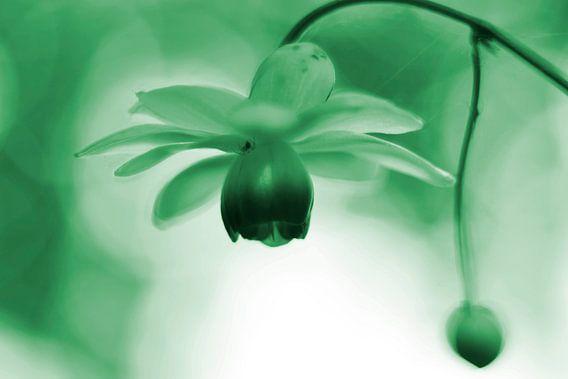 Lantaarntje met spinnetje groen  vintage
