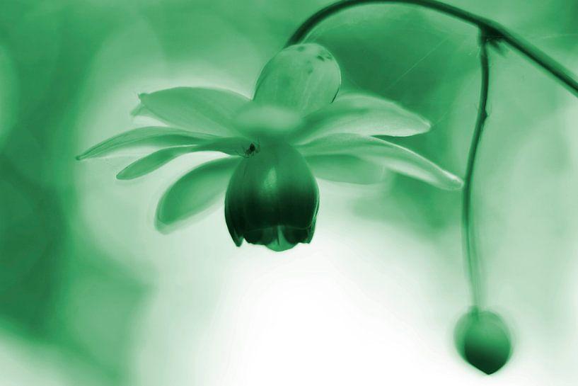 Lantaarntje met spinnetje groen  vintage van Sascha van Dam