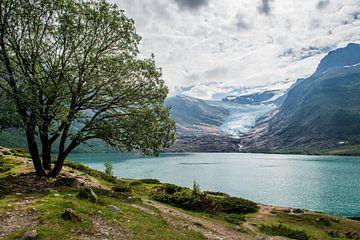 Gletsjer in Noorwegen van Ellis Peeters