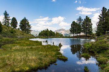 Zuid Tirol (Nauders) von Erik Bertels