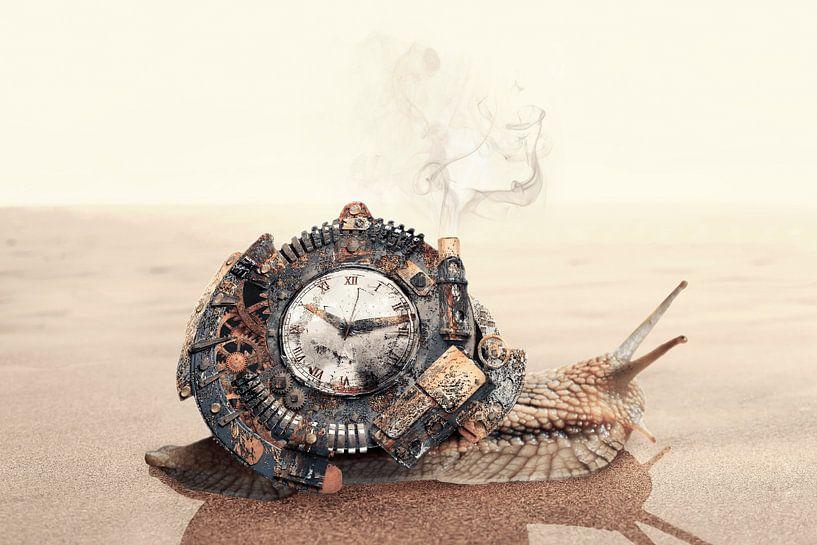 Steampunk woestijnslak van Elianne van Turennout
