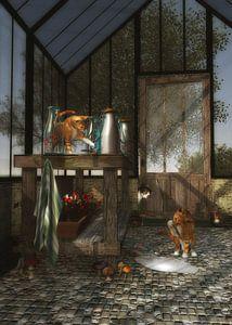 Katten spelen in het tuinhuis