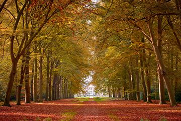 Brede laan naar kasteel in herfstkleuren van Jenco van Zalk