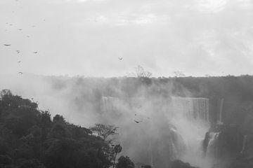 Argentinië Iguazu Falls van Linda Hanzen