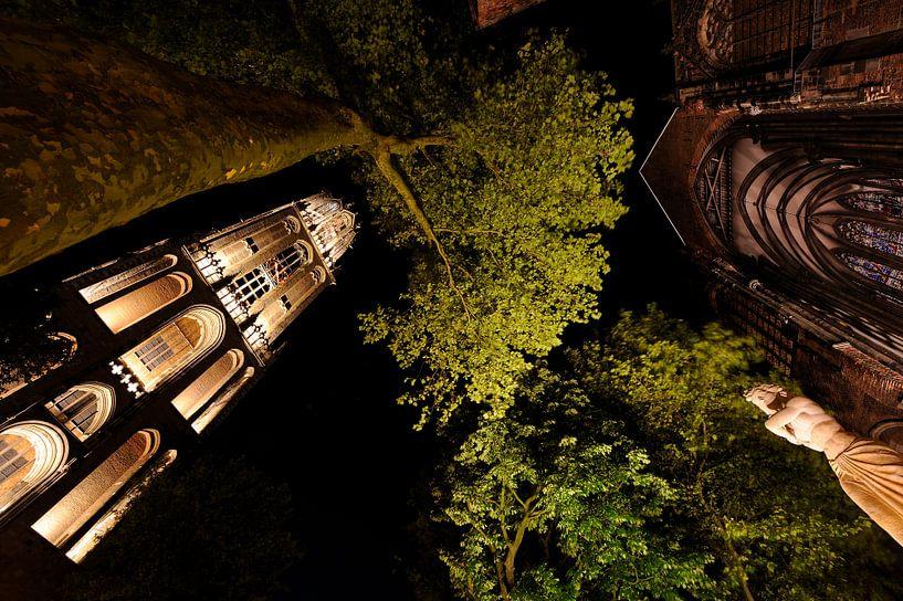 Domtoren, Domkerk en verzetsmonument in Utrecht van Donker Utrecht