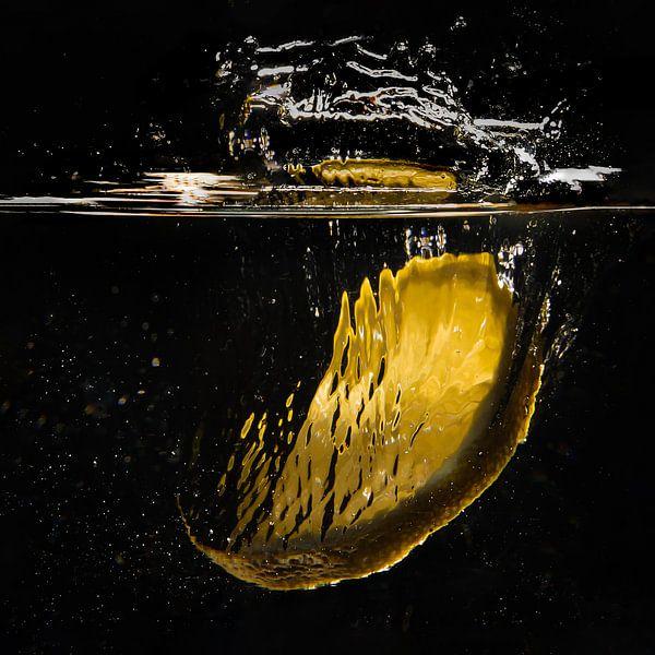 Splash! van Reginald Kluijtmans