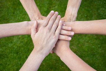 Zes armen verenigd met handen op elkaar met groen gras als achtergrond. van