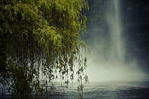 De treurwilg en de fontein van Jille Zuidema