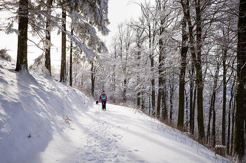Zonnige sneeuw hike in Duitsland 2