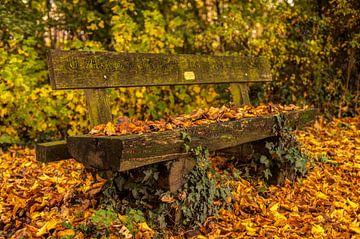 Bankje in herfstkleuren bij Simpelveld von John Kreukniet