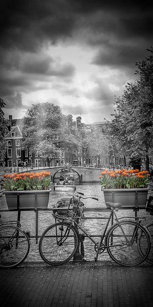 AMSTERDAM Herengracht   panorama van Melanie Viola