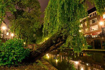 Utrecht Oudegracht: Treurwilg bij Geertebrug sur martien janssen
