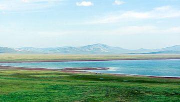Mehr in der Mongolei von Job Moerland