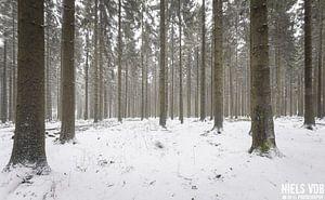 Luxemburg in sneeuwval van