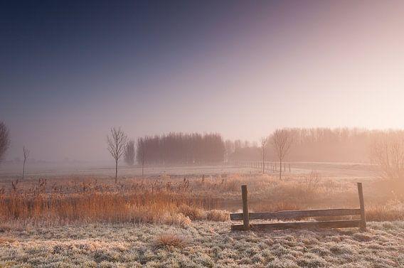 Misty Morning at Leidschendam - 3 van Damien Franscoise