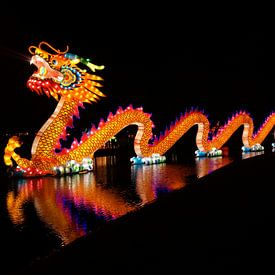 China Lights sur Andrea Ooms