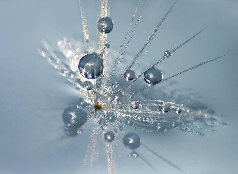 Blue Reflections... van Caroline Lichthart