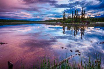 Middernachtzon in Alaska van Denis Feiner