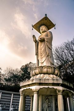 Buddha in Bongeunsa in Seoul van Mickéle Godderis