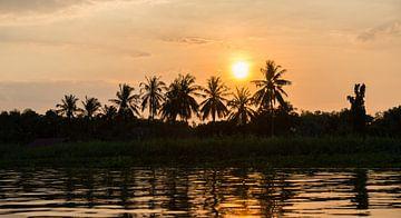 zon en palmbomen  von Michael De Hoogh