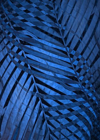 TROPICAL NEBULAS BLUE LEAVES PATTERN no3