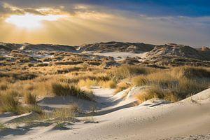 De duinen van Terschelling van