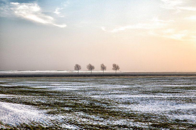 Polderlandschap in winter van Jan Sportel Photography