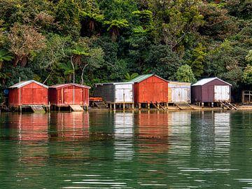 De Boothuizen van Stewart Island, Nieuw-Zeeland van Rik Pijnenburg