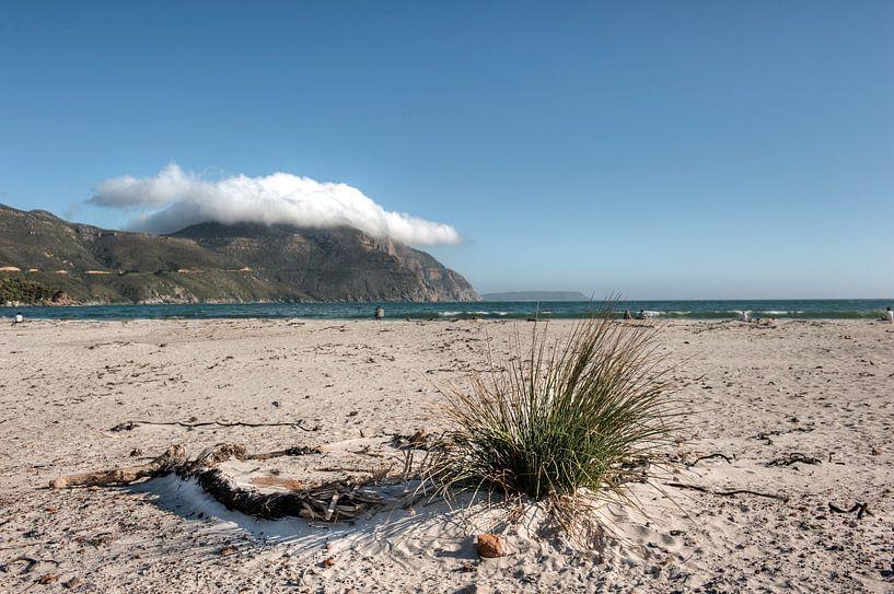 Houtbaai bij Kaapstad van Esther Seijmonsbergen
