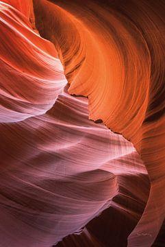 Lower Antelope Canyon VIII, Alan Majchrowicz van Wild Apple