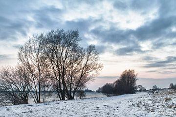 Winter Treescape van Serge Sanramat