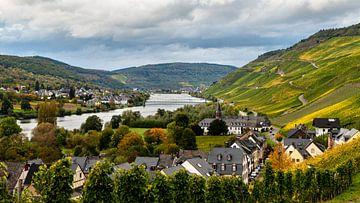 View op de Moezel Rivier, Duitsland van Adelheid Smitt