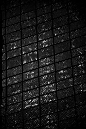 Patroon zwart/wit van
