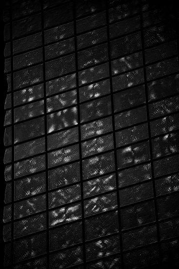 Patroon zwart/wit van Godelieve Luijk