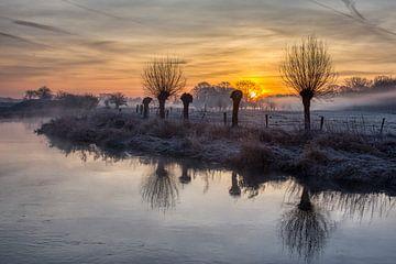 Vorst in de Morgen van R. Maas