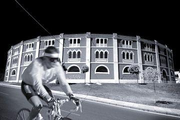 Rennradfahrer (Duoton) von Rob Blok