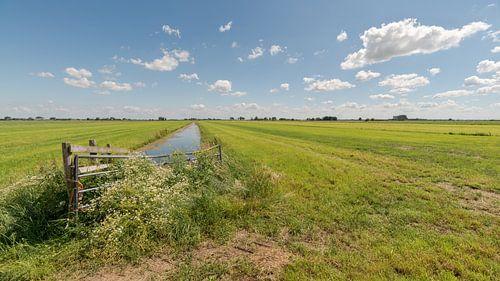 Weidse blik over polderlandschap Alblasserwaard