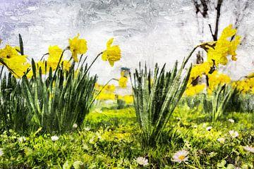 Bunte Narzissen im Frühjahr (Kunst) von Art by Jeronimo