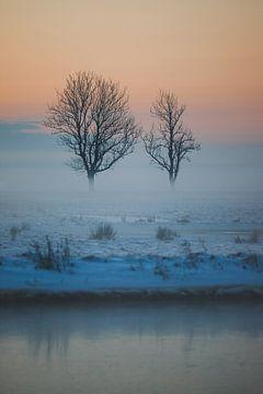 Mistig Nederlands Sneeuwlandschap met Eenzame Bomen van Susanne Ottenheym
