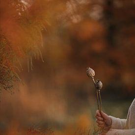 Herfst sfeerplaat met gedroogde stengels klaproos zaaddozen van Mayra Pama-Luiten