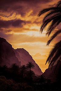 Masca - Tenerife van