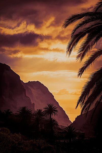 Masca - Tenerife van Yvette Bauwens