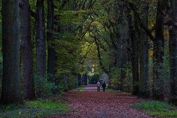 Herfst van Lianne Hermans