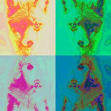 Vier vossen (gespiegeld) sur
