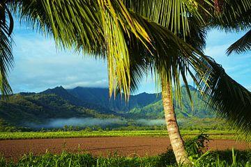 LP 70522546 Sporen van mist over prachtig landschap van BeeldigBeeld Food & Lifestyle