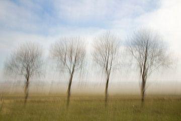 Bewogen bomen van Ellen Middelkoop