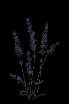 Lavendel van MishMash van Heukelom