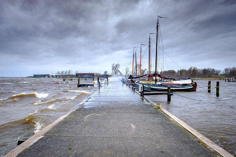 Sturm auf die Saufrau am Lauwersmeer in Lauwersoog von Evert Jan Luchies