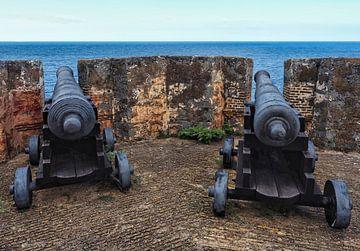 Kanonnen Fort Beekenburg van Atelier Liesjes