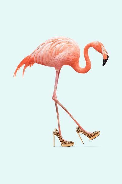 Fancy Flamingo van Jonas Loose